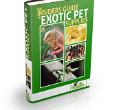 exotic pet supplies